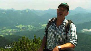 Fossilien in den Alpen: Forscher auf Zeitreise - Gut zu wissen