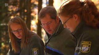 Streit in der Jachenau: FFH-Gebiete brauchen Managementpläne | BR