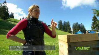 Bienen auf der Alm: Mit Höhenluft gegen das Bienensterben - BR Fernsehen