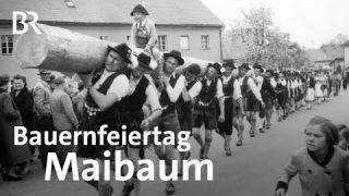 Bauernfeiertage: Maibaumaufstellen damals | Unser Land | BR